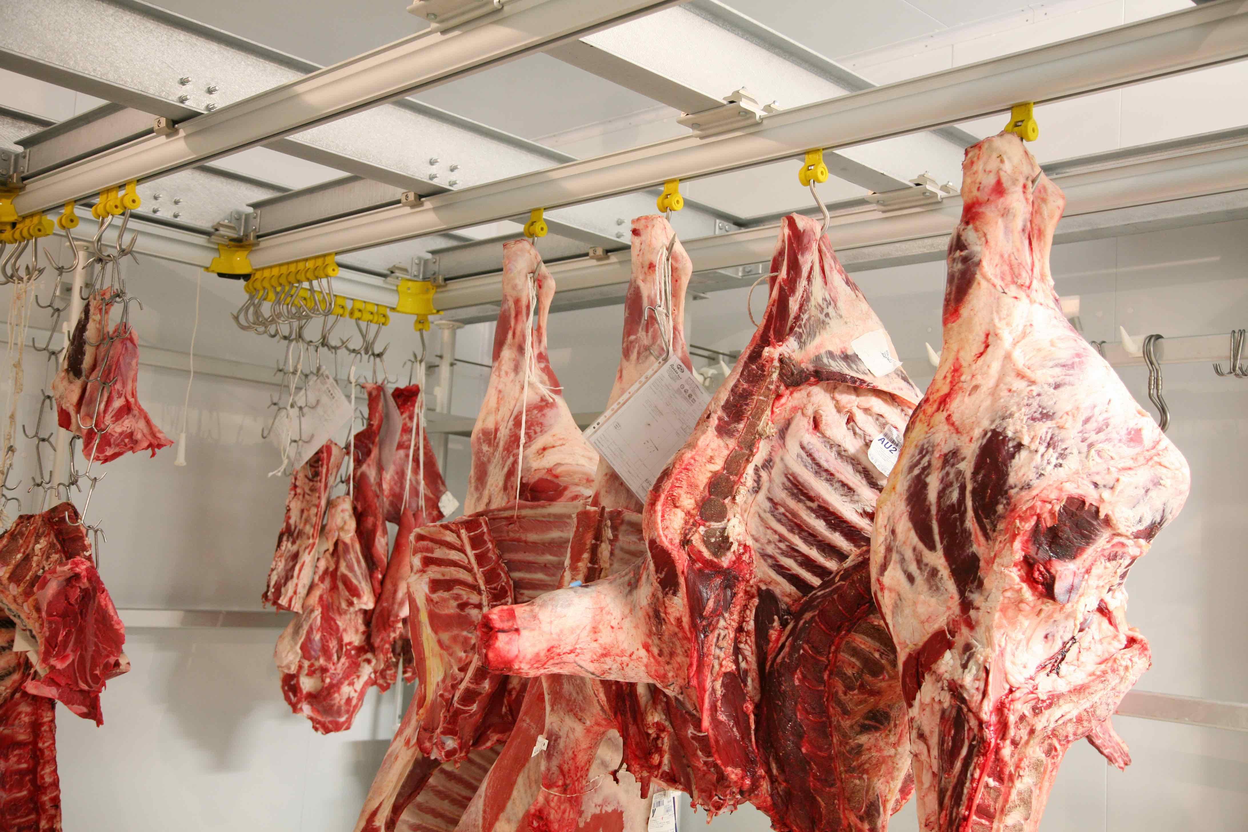 Камера холодильная для мясных туш